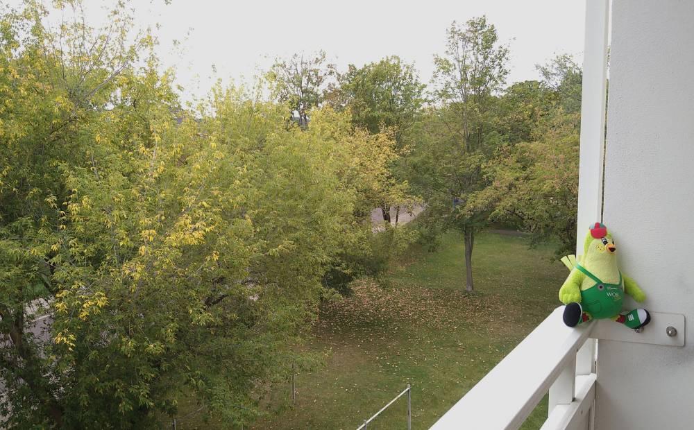 Sputnikstr. // Ausblick vom Balkon