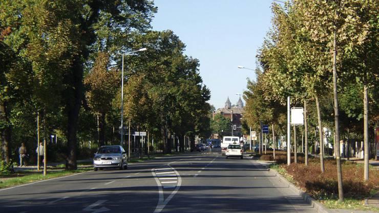Brückfeld