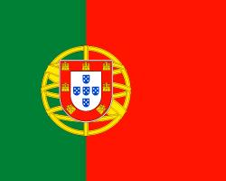 Flagge P